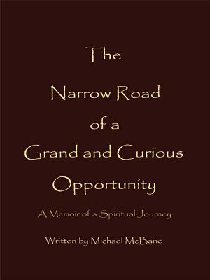 The Narrow Road of a Grand and Curious Opportunity Michael McBane