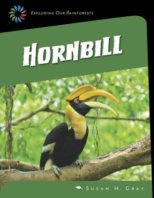 Great Hornbill  by  Susan H Gray