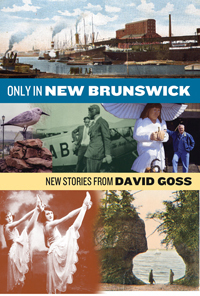 Only in New Brunswick: New Stories from David Goss  by  David Goss