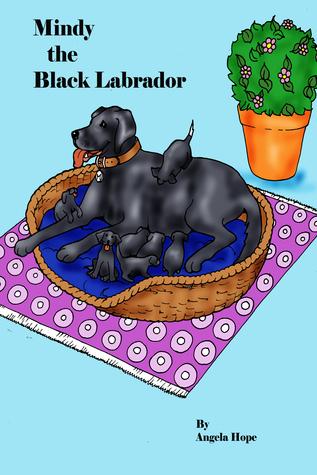 Mindy the Black Labrador Angela Hope