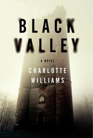 Black Valley: A Novel  by  Charlotte Williams