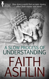 A Slow Process of Understanding  by  Faith Ashlin