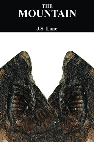 The Mountain: A meditation on the consequences of an obsession J.S. Lane