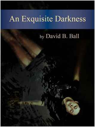 An Exquisite Darkness  by  David B. Ball