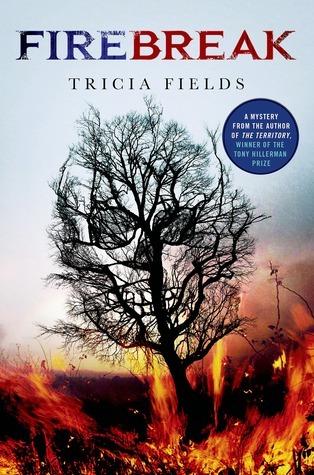 Firebreak: A Mystery (Josie Gray Mysteries, #4)  by  Tricia Fields