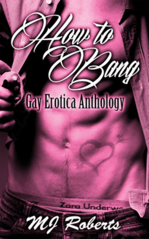 How to Bang: The Complete Anthology of Gay Erotica  by  M.J.   Roberts