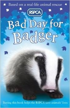 Bad day for badger  by  Sarah Hawkins