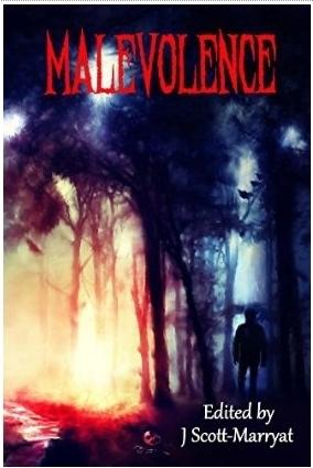 Malevolence: Tales from Beyond the Veil  by  J. Scott-Marryat