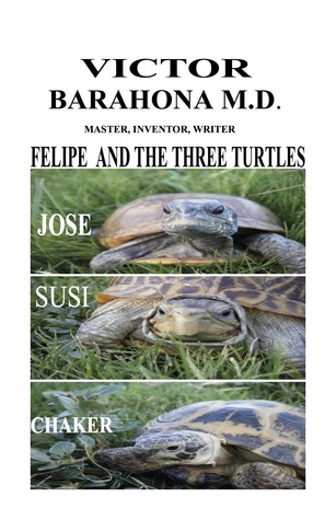 Felipe and the Three Turtles  by  Victor Barahona