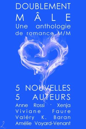 Doublement mâle: Une anthologie de romance M/M Anne Rossi