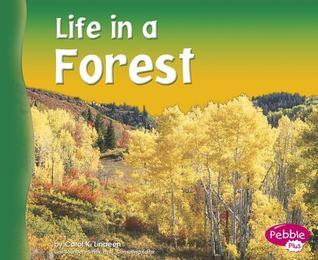 Life in a Forest Carol K. Lindeen