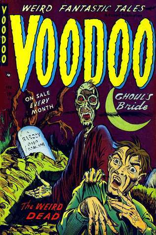 Voodoo (Comic Book)  by  Ruth A. Roche