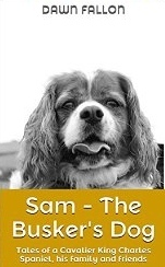 Sam - The Buskers Dog  by  Dawn Fallon