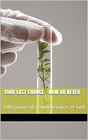 YOUR LAST CHANCE - NOW OR NEVER: Pilgrimage of rememberance of God  by  Rohit Khanna