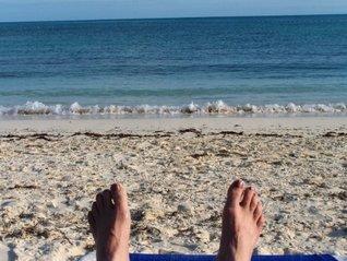 Shells Turning to Sand Carol Stigger