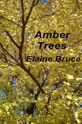 Amber Trees Elaine Bruce
