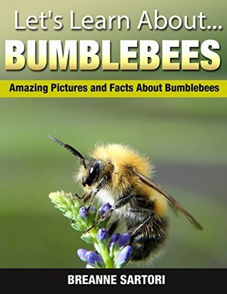 Bumblebees : Amazing Pictures and Facts About Bumblebees  by  Breanne Sartori