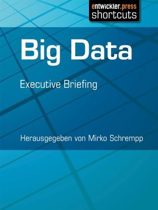 Big Data - Executive Briefing Mirko Schrempp
