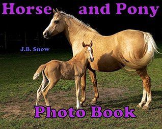 Horse and Pony Photo Book: A picture book of Horses and Ponies for you to enjoy!  by  J.B. Snow