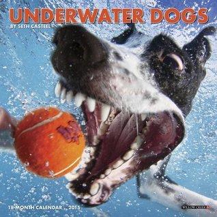 Underwater Dogs 18-Month Mini Calendar  by  Seth Casteel