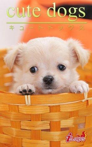 cute dogs16 Chihuahua kabusikigaisyailogos