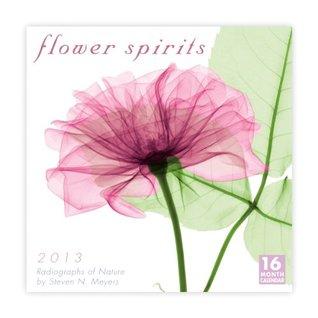 Flower Spirits 2013 Wall Steven N. Meyers