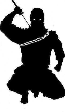 Assassin, lombre sous la lame Patrick DOUILHAC