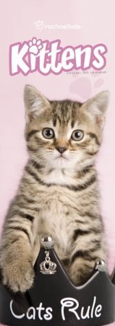 RACHEL HALE CATS (kittens) 2014 SLIM CALENDAR (Calendar 2014)  by  NOT A BOOK