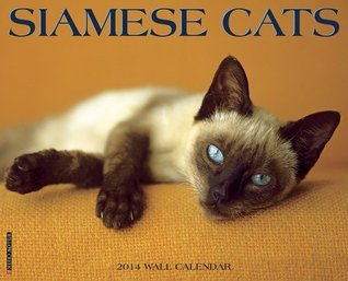 Siamese Cats 2014 Wall Calendar  by  NOT A BOOK