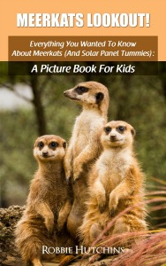 Meerkats Lookout!: Everything You Wanted To Know About Meerkats (And Solar Panel Tummies): A Picture Book For Kids (The Everything You Wanted To Know About series of Picture Books For Kids 5) Robbie Hutchins