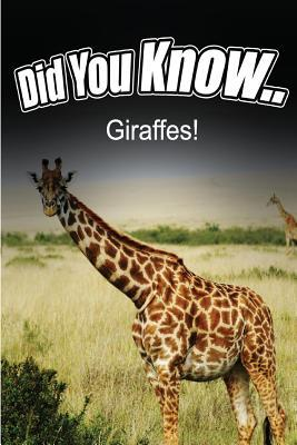 Giraffes  by  Breanne Satori