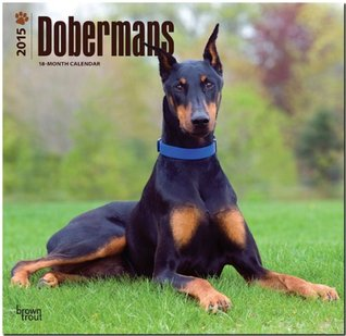 Dobermans 2015 Square 12x12  by  NOT A BOOK
