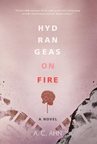 Hydrangeas on Fire  by  A.C. Ahn