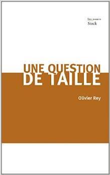 Après la chute Olivier Rey