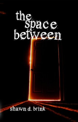 The Space Between Shawn D Brink