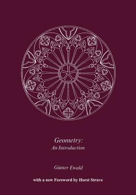 Geometry an Introduction  by  Gunther Ewald