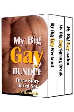 My Big Gay Bundle: Three Story Boxed Set  by  J.D. Hardwick