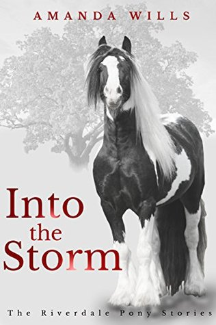 Into the Storm (The Riverdale Pony Stories Book 3)  by  Amanda Wills