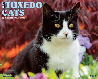 Just Tuxedo Cats 2015 Wall Calendar  by  NOT A BOOK