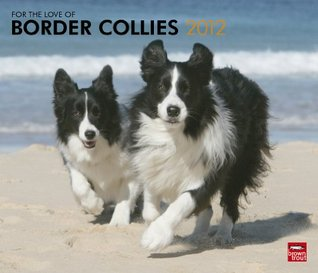 Border Collies, For The Love Of 2012 Deluxe Wall Calendar  by  NOT A BOOK