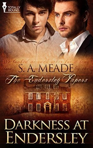 Darkness at Endersley (The Endersley Papers Book 2)  by  S.A. Meade