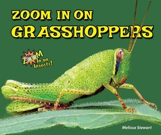 Zoom In on Grasshoppers  by  Melissa Stewart