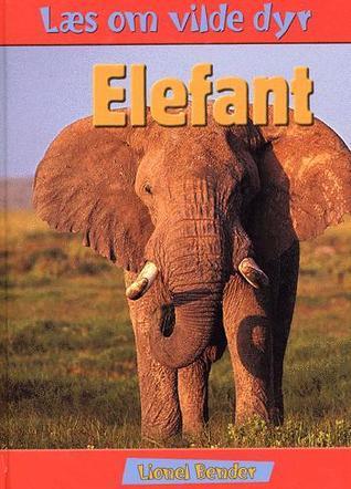 Elefant Lionel Bender