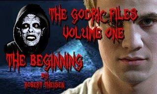 The Godric Files Volume 1: The Beginning  by  Robert Theisen