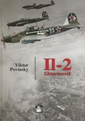Il-2 Shturmovik  by  Viktor Povinsky