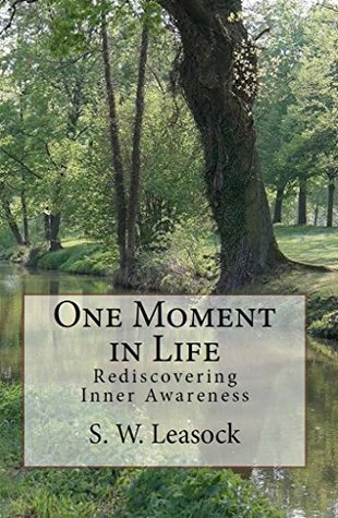 One Moment in Life: Rediscovering Inner Awareness  by  S. Leasock