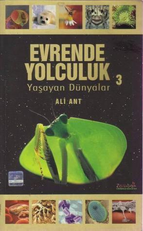 Evrende Yolculuk 3  by  Ali Ant