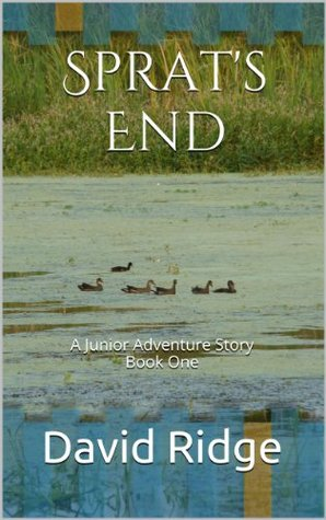 Sprats End: A Junior Adventure Story Book One  by  David Ridge