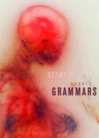 Between Grammars  by  danielle vogel
