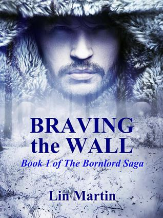 Braving the Wall  by  Lin Martin